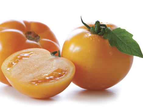 Persimmon Tomato