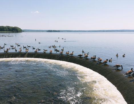 Pymatuning Lake