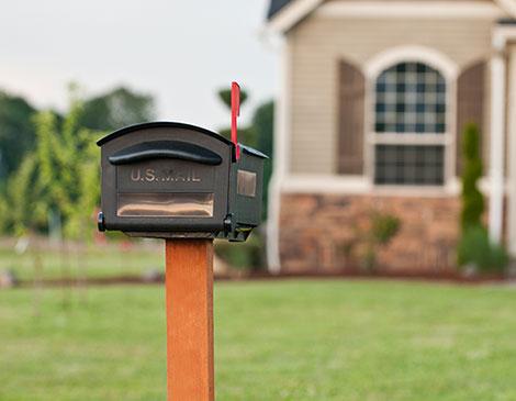 Junk Mail Junkie