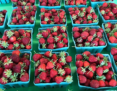 West Orchards Farm Market
